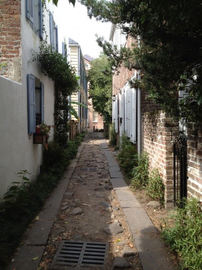 Longitude Lane - an unimproved 17th century country lane preserved in the heart of Charleston