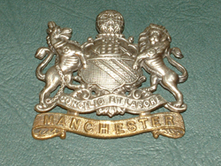 8th manchester badge