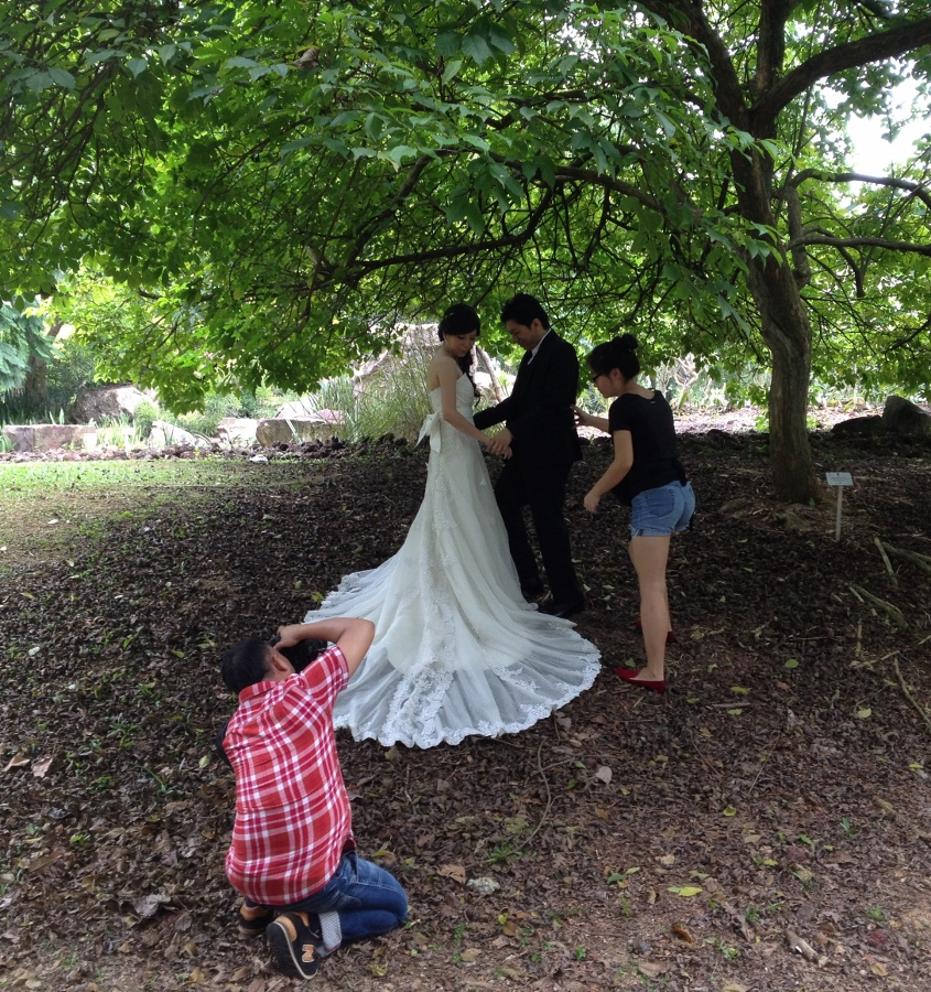 Wedding Photoshoot at the Gardens