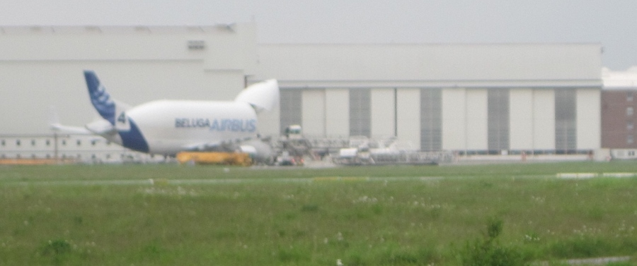 Airbus Beluga which had just arrived - offloading parts