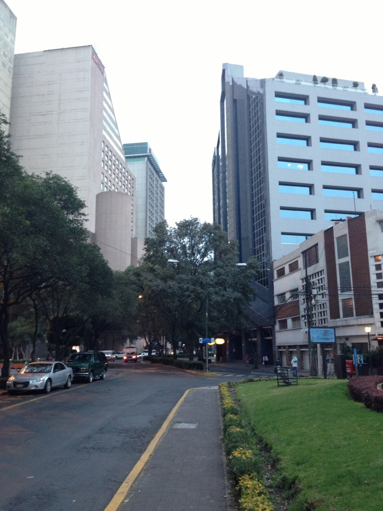 View of the Polanco District
