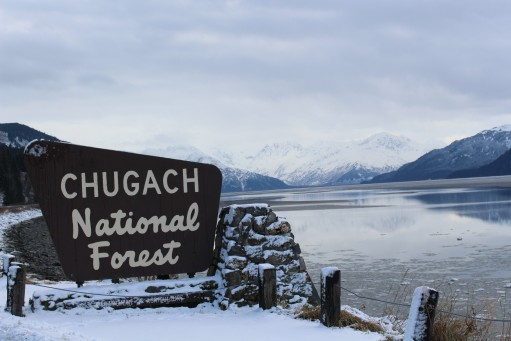 Chugah National Forest