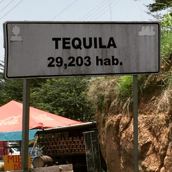 Going on a Tequila Factory Tour in Mexico