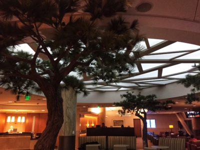 American Airlines Admiral's Club San Francisco Quick Review